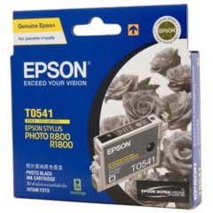 Epson T0541 Photo Black Ink Cartridge